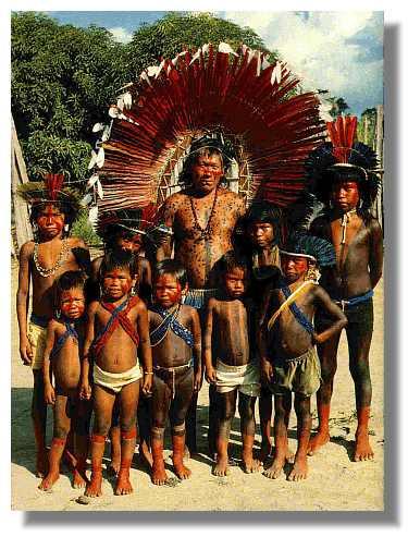 Sabiduria Indigenea