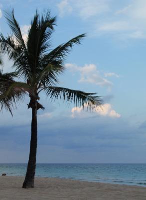 El horizonte ..tan lejano como tu